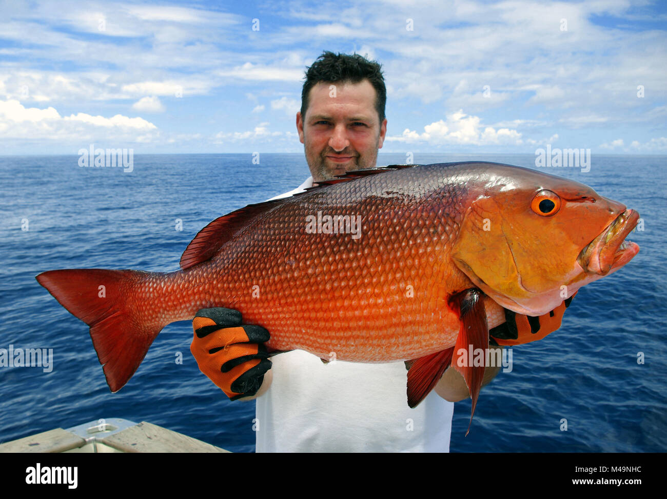 Lucky  fisherman holding a beautiful red snapper. Deep sea fishing, big game fishing, catch of fish. Stock Photo