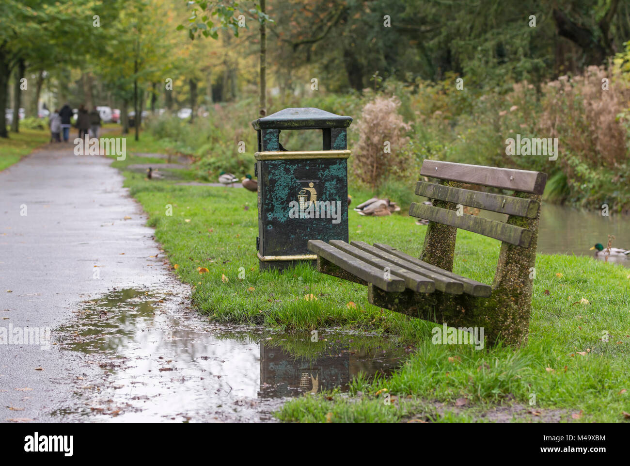 Wooden park bench after heavy rain with a large puddle and nobody sitting in Autumn in England, UK. - Stock Image