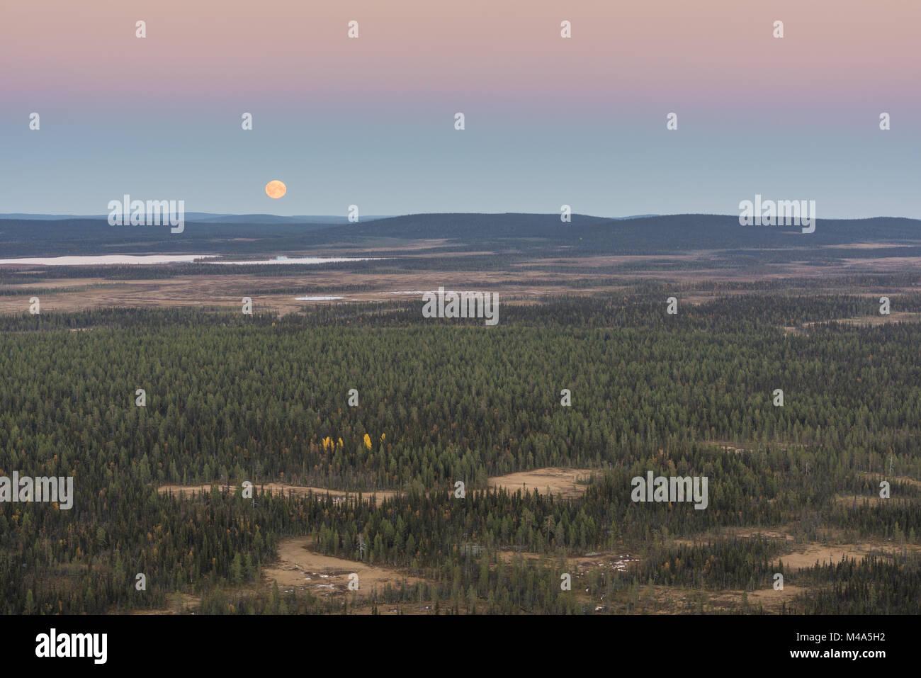 Moonrise, Muddus National park, Lapland, Sweden. Stock Photo
