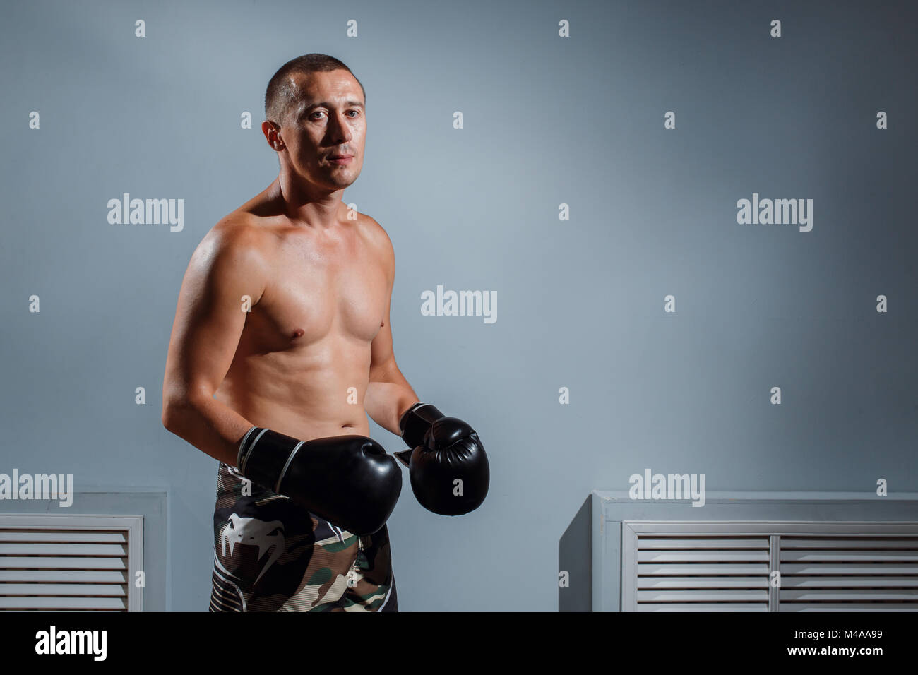 dd286abdcd39 portrait of boxer in Boxing gloves on gray background - Stock Image