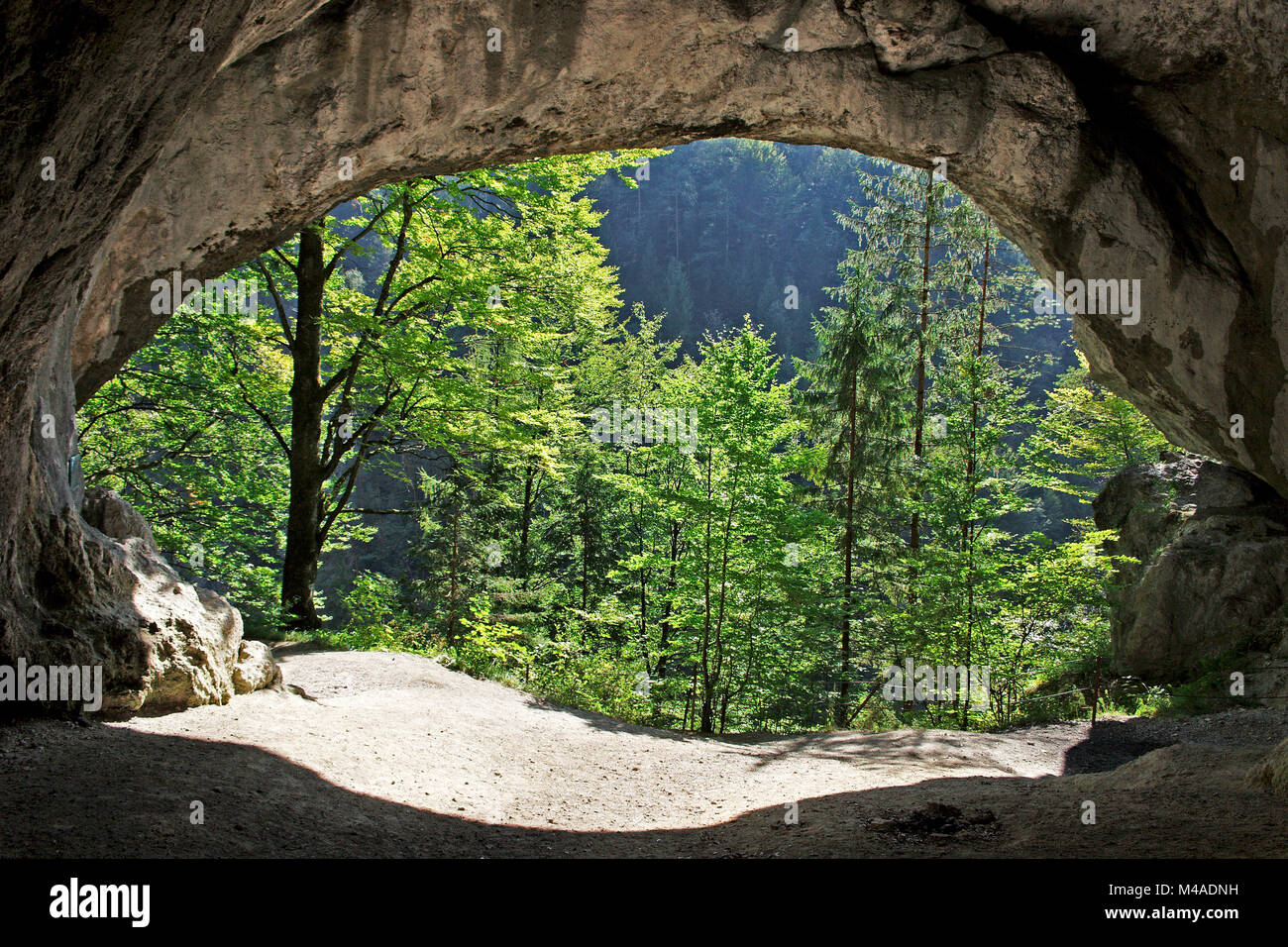 view out of the Tischofer Cave in the kaisertal valley in the kaisergebirge mountains in austria - Stock Image