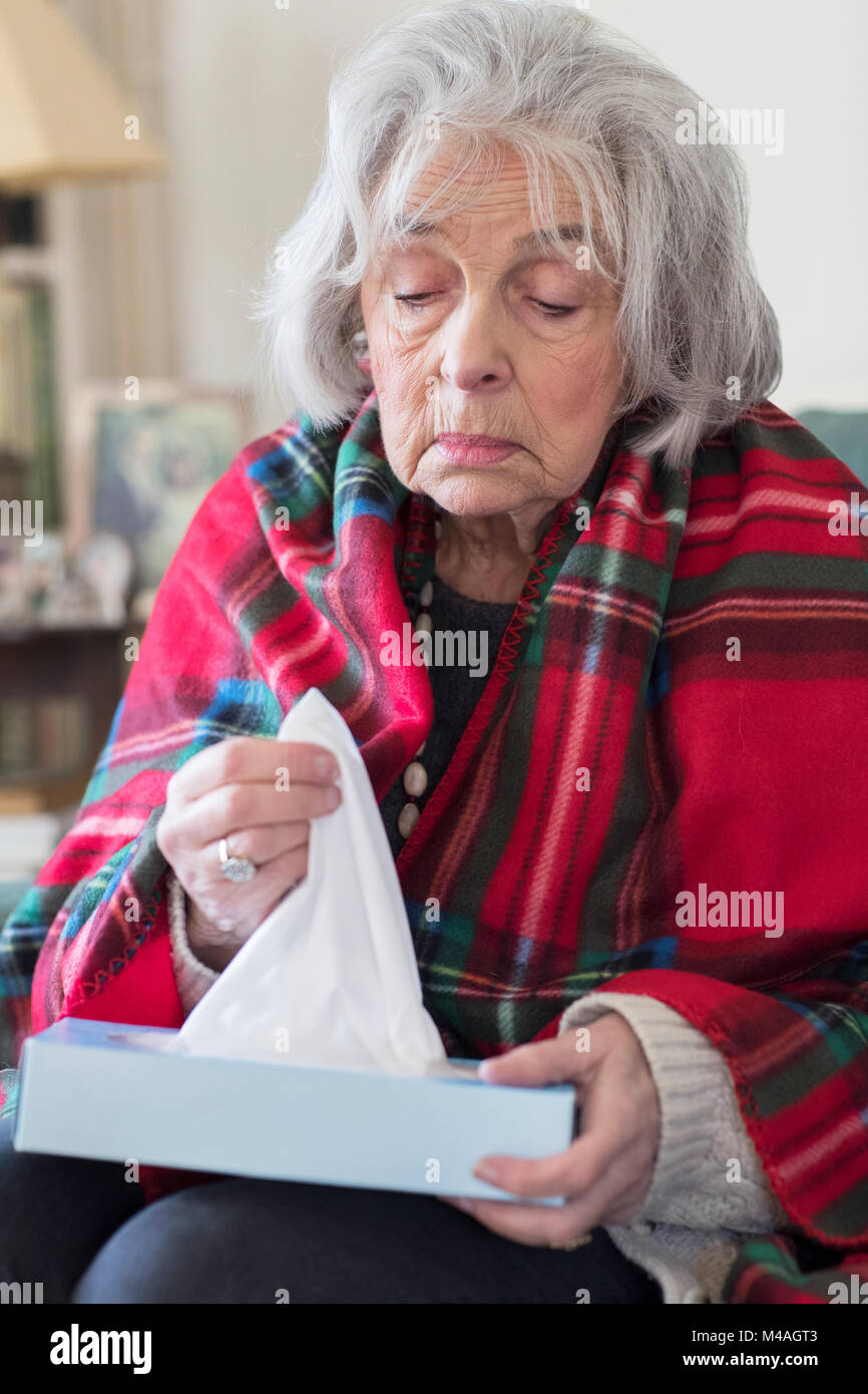Senior Woman At Home Suffering With Flu Virus - Stock Image