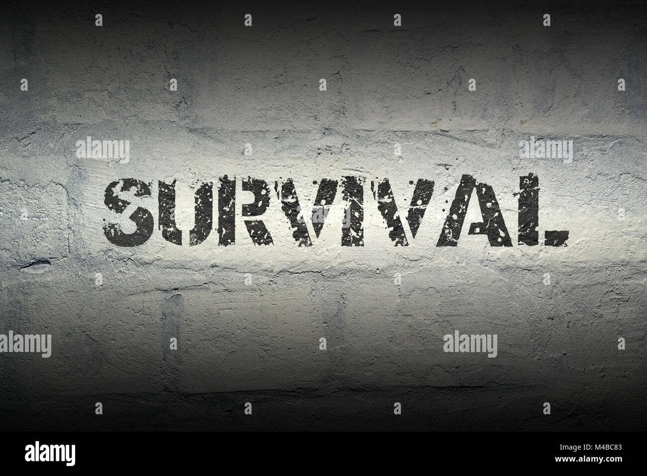 survival WORD GR - Stock Image