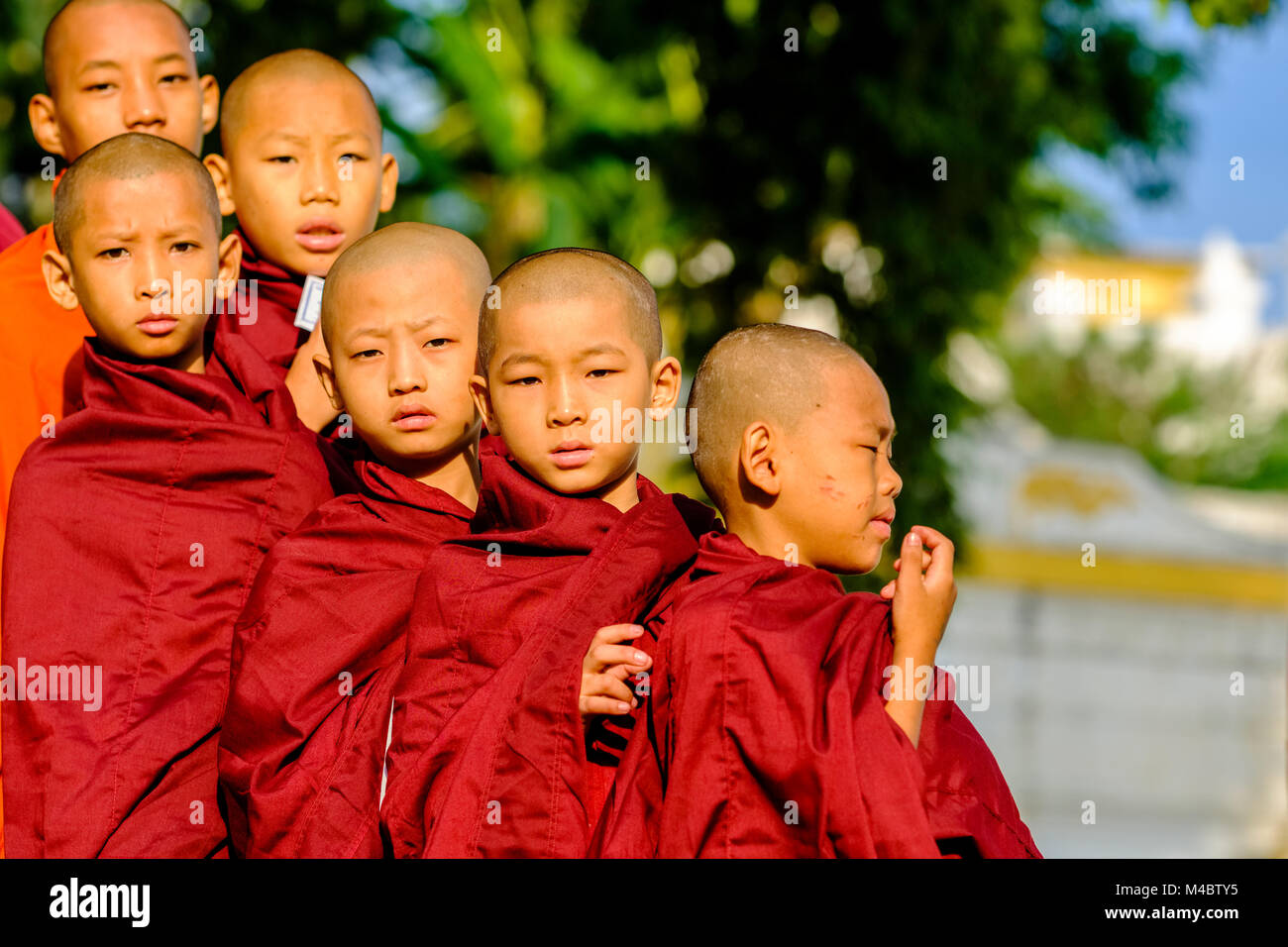 Portraits of young buddhist monks queuing in a long row to receive donations in a monastery - Stock Image