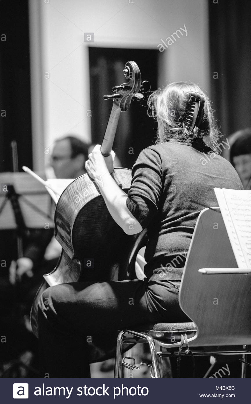 Rear view of violoncelist preparing for performance - Stock Image