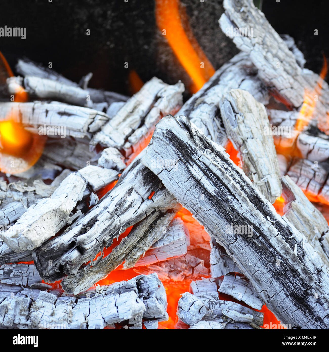 bonfire, fire, wood coal and ash - Stock Image