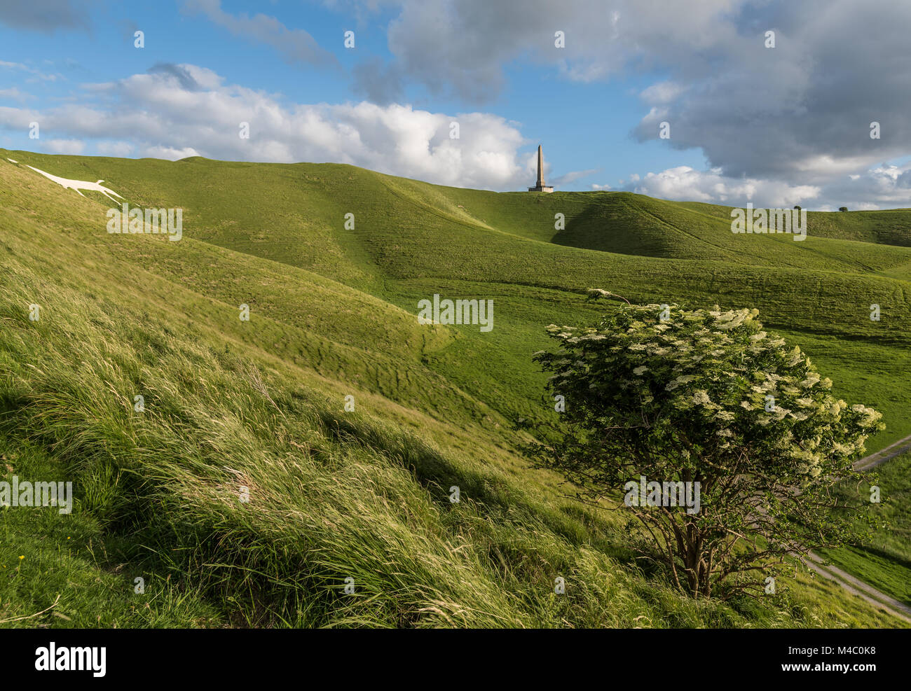 Cherhill Down with the Lansdowne Monument and white horse Stock Photo