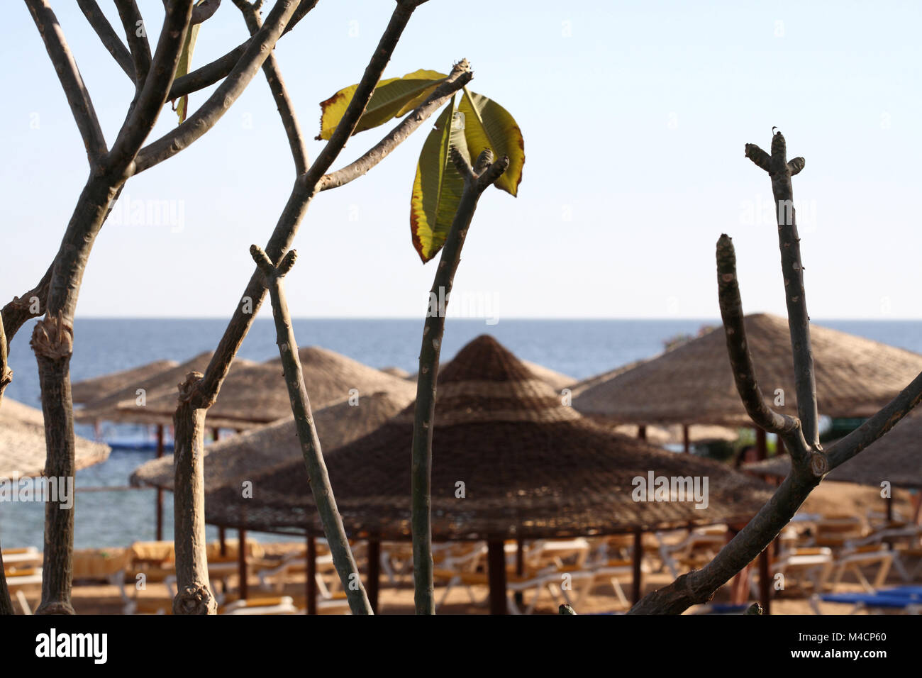 Sea landscape, Egypt, Sharm El Sheikh - Stock Image