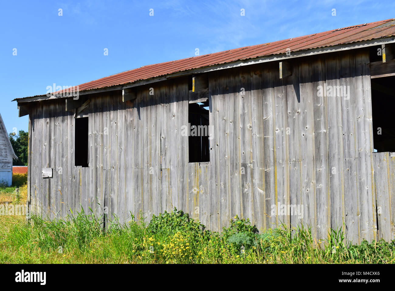 Superbe Weathered And Worn Old Barn Storage Facility At A Rural Countryside Farm In  The Pacific Northwest Countryside Of Bellingham, Washington, USA.