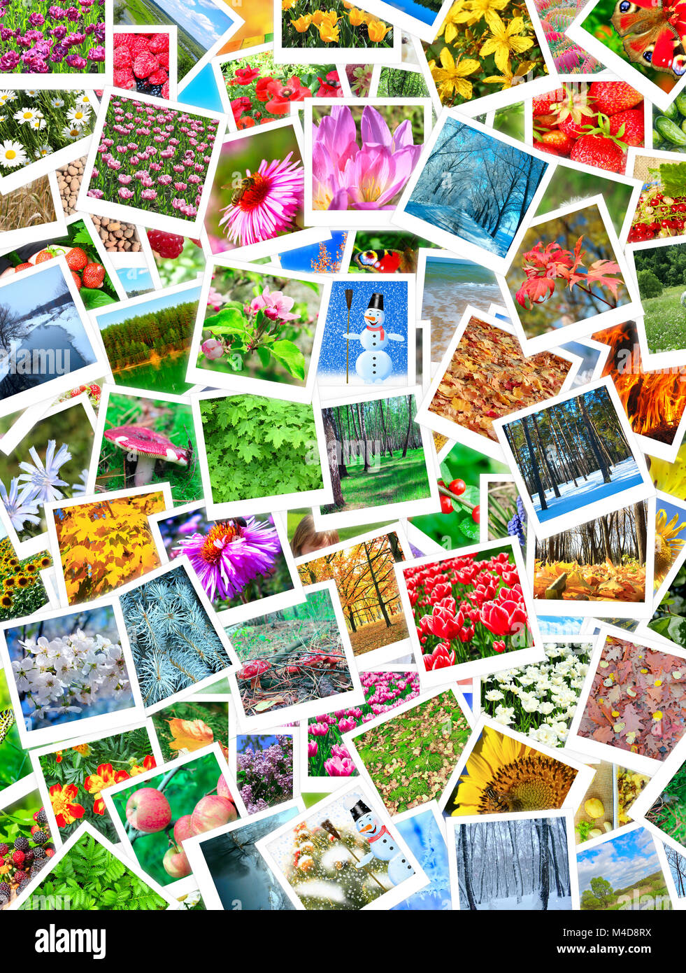 A lot of different beautiful nature photos - Stock Image