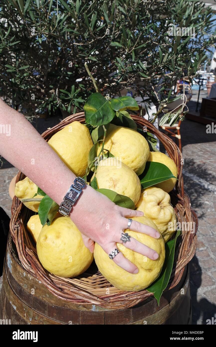 Women's hand reaches for lemons - Stock Image