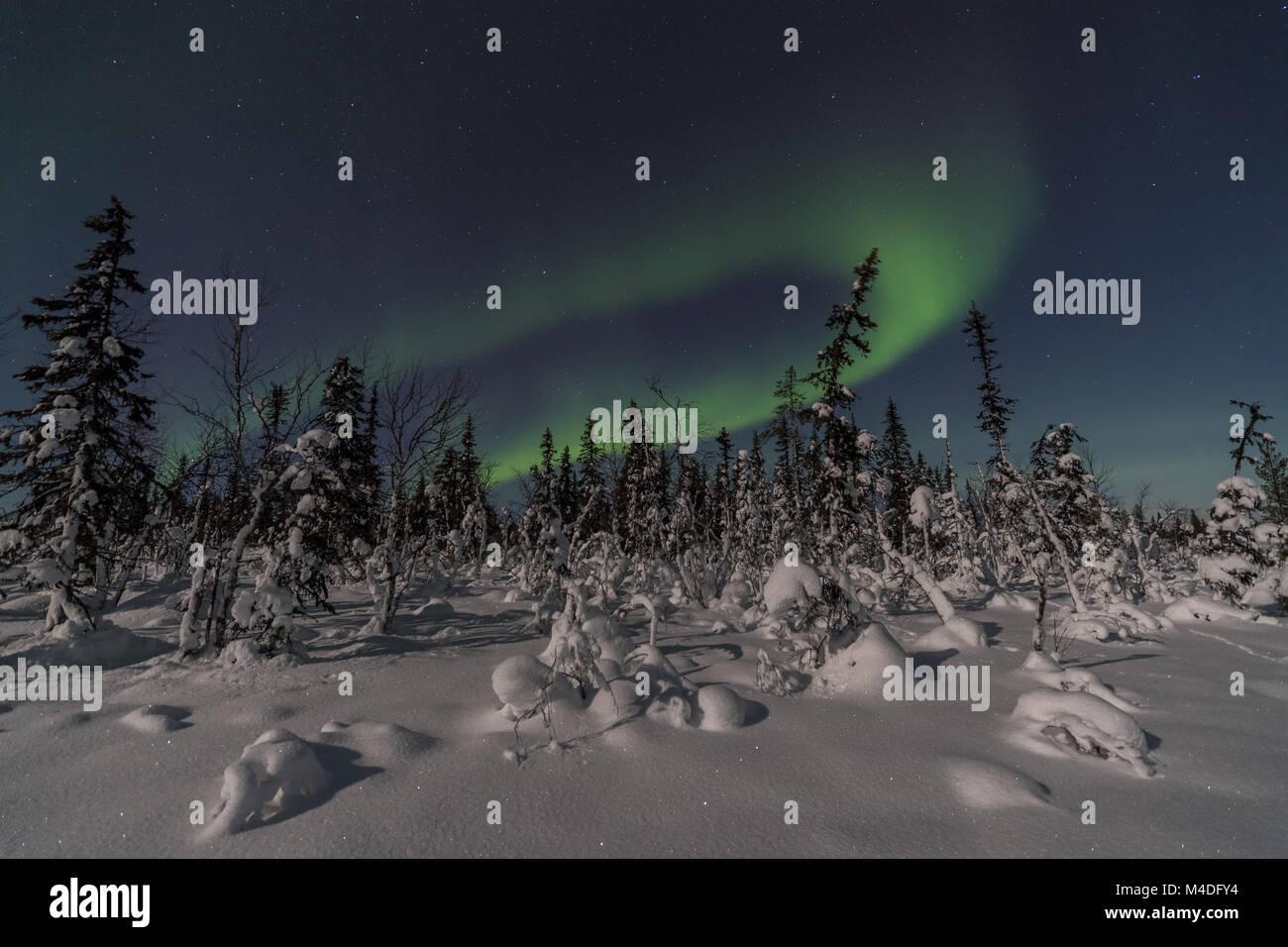 Northern lights above moonlit landscape, Lapland, Sweden Stock Photo