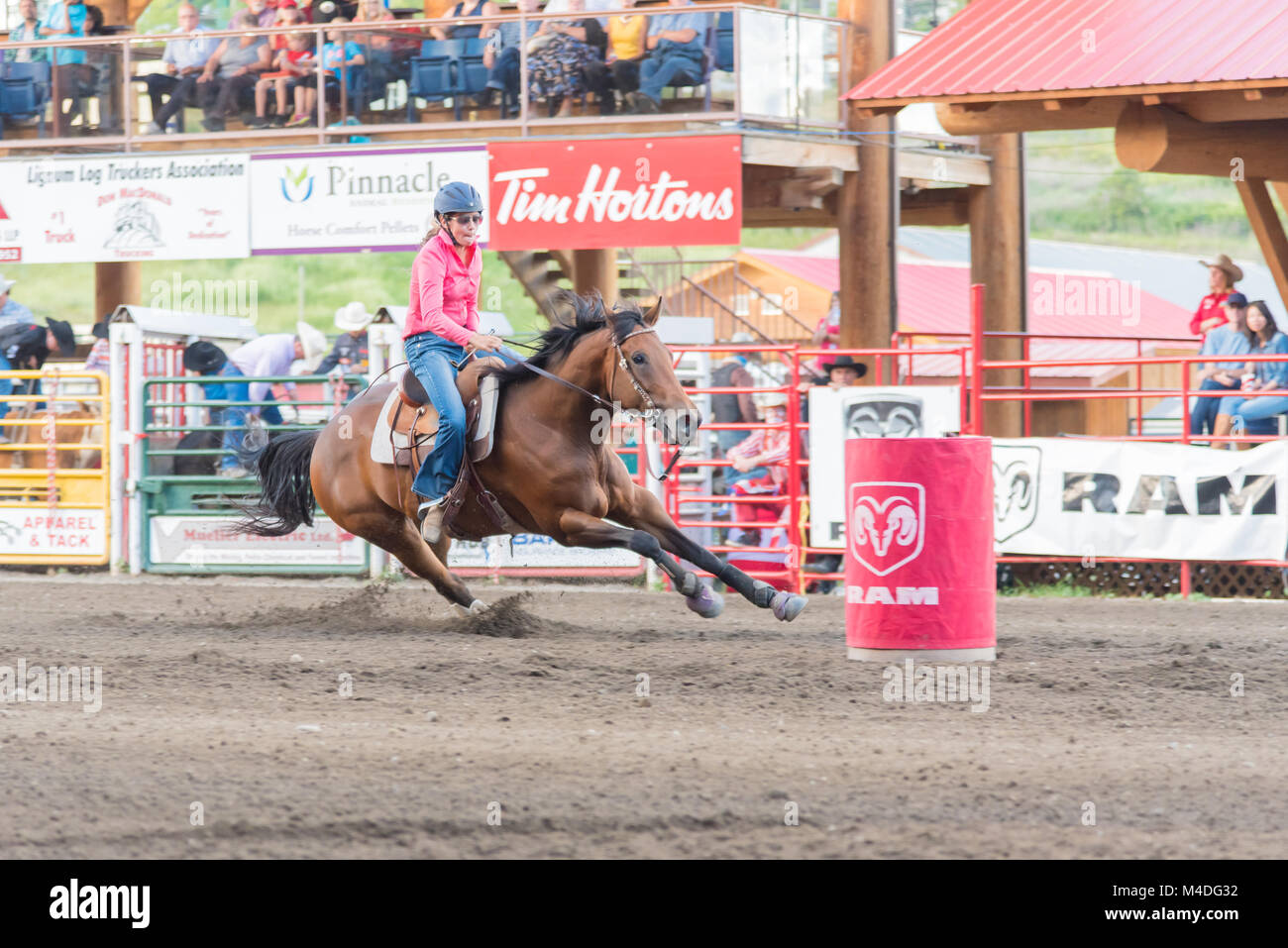 Horse and rider approach next barrel during a barrel racing competition at the 90th Williams Lake Stampede, one - Stock Image