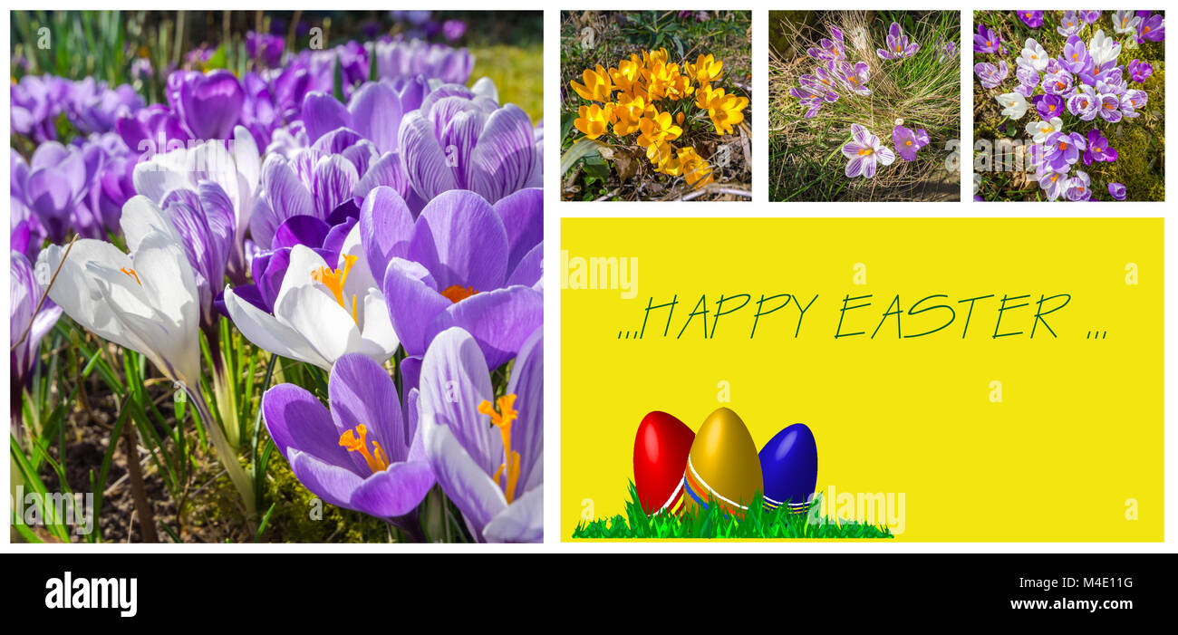 easter greeting card with lovely pictures - Stock Image