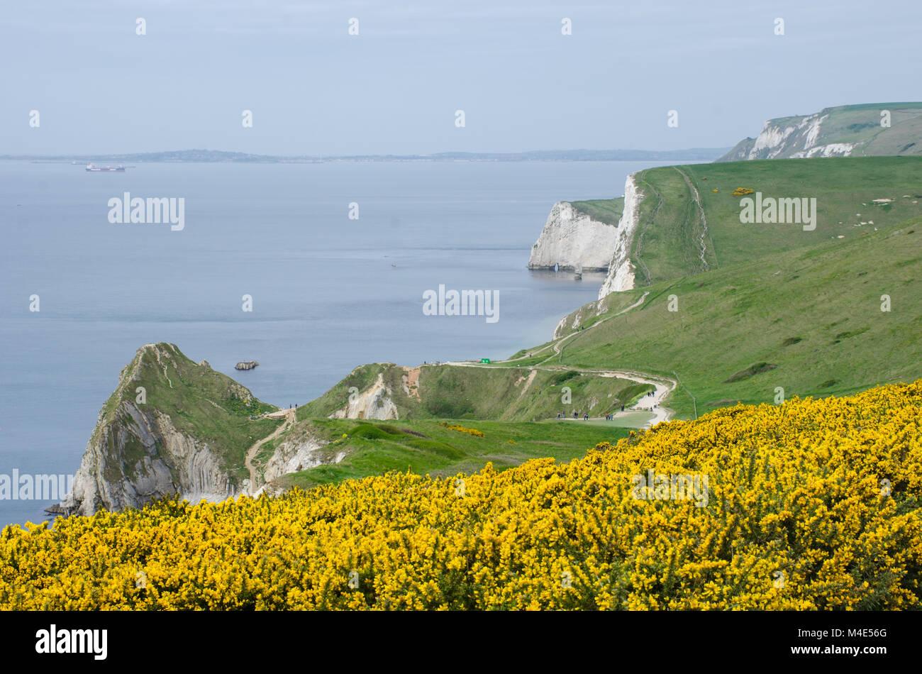 Dorset Coast heading  to Durdle Door - Stock Image