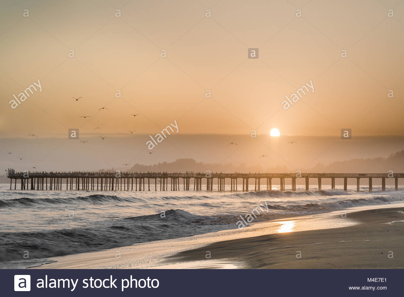 Birds Fly Into The Sunset Skies of Seacliff State Beach. - Stock Image