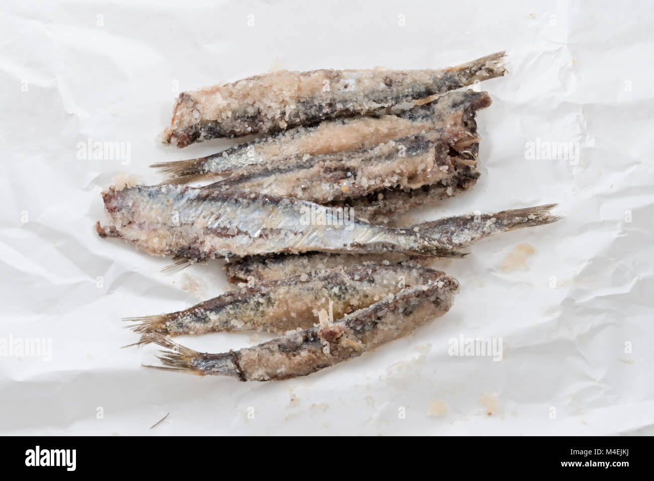 sardines salted anchovies on paper 2 - Stock Image