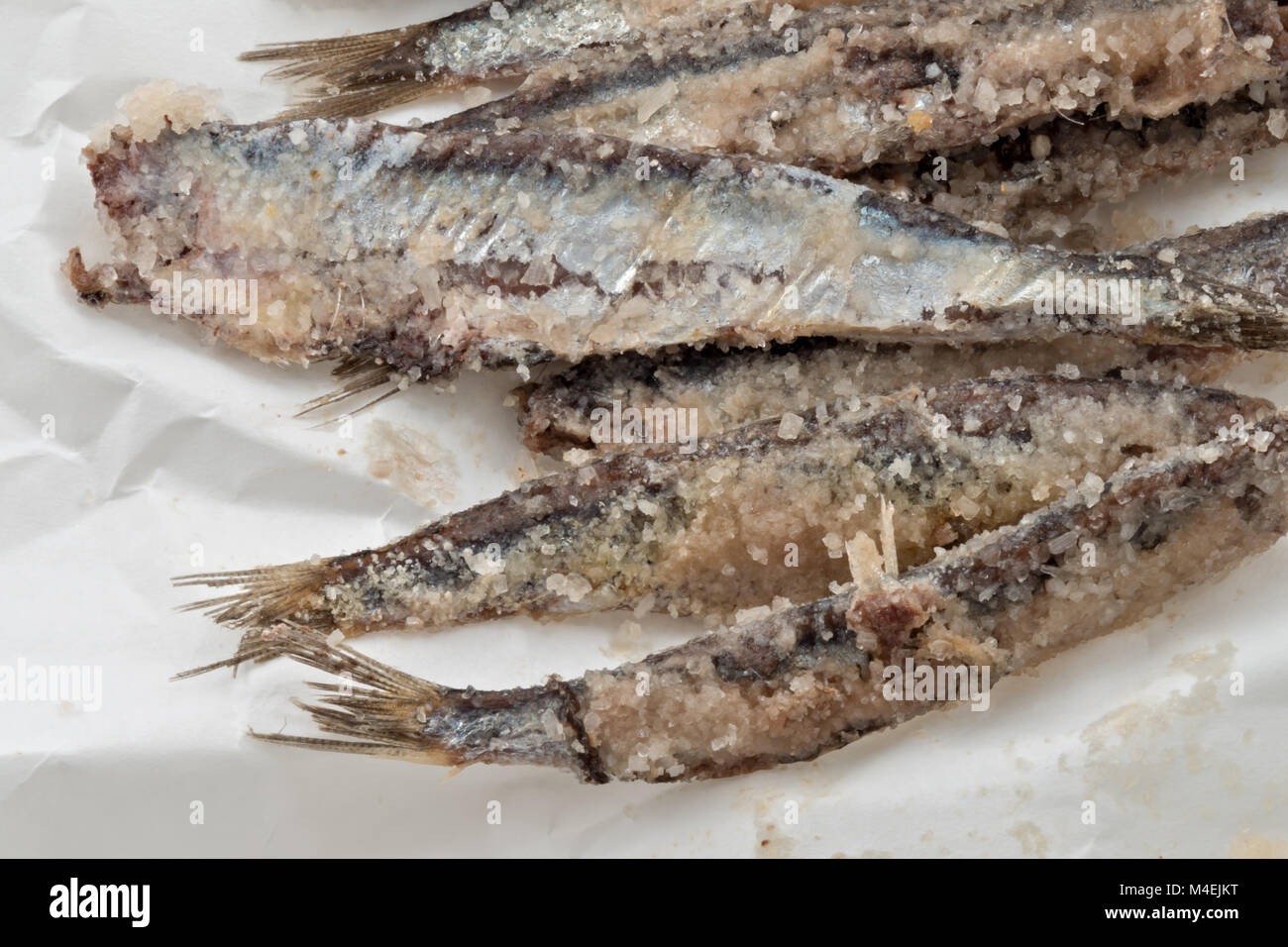 sardines salted anchovies on paper 3 - Stock Image