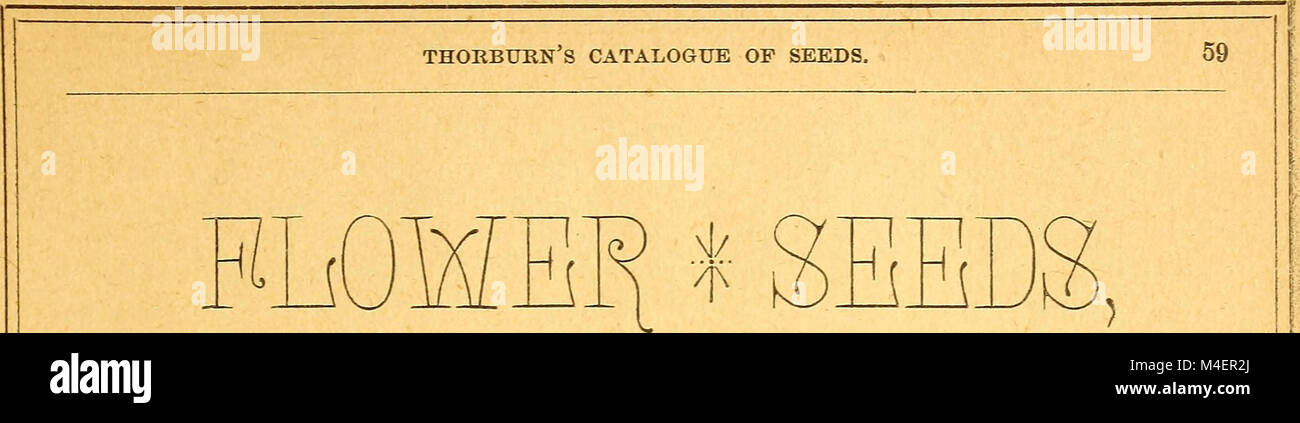 Annual descriptive catalogue of seeds - for the vegetable garden, for the flower garden, for the lawn, for the farm, Stock Photo