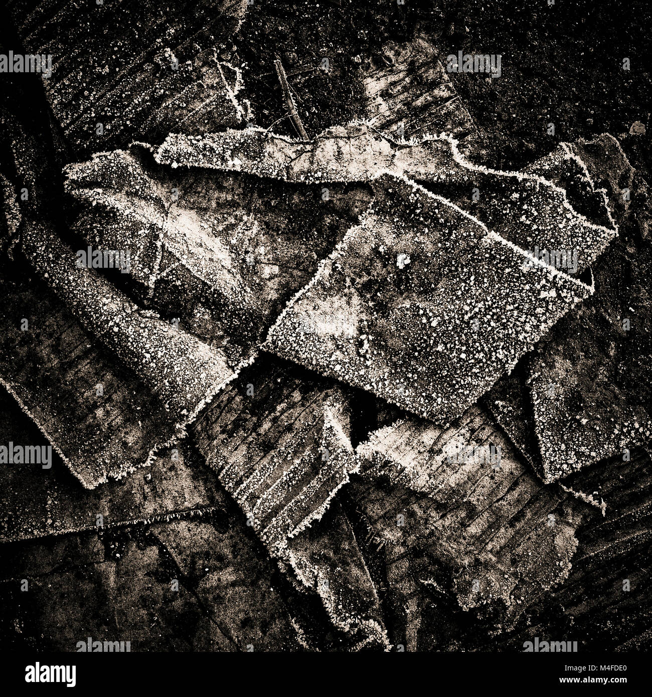 Paper in a landfill - Stock Image