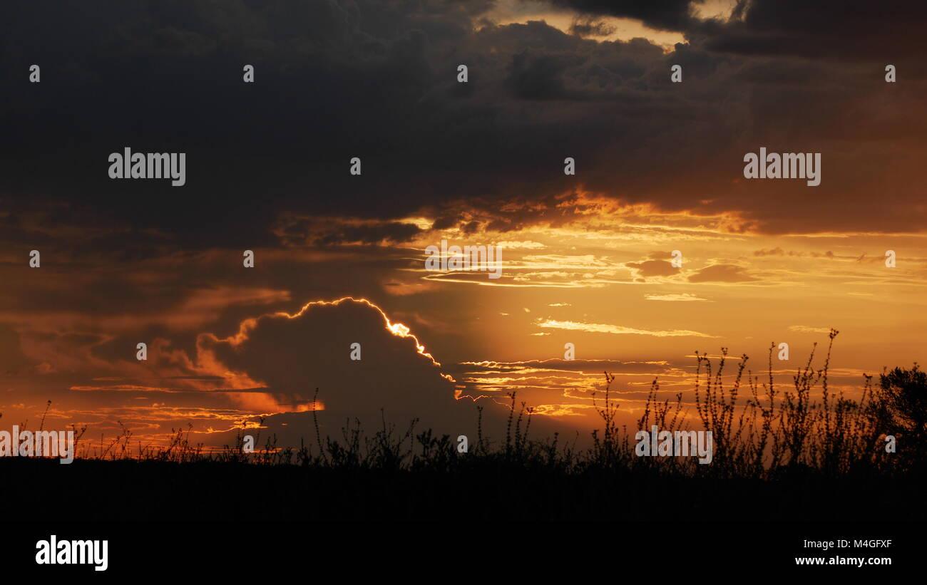 Central Kalahari Game Reserve sunset africa botswana - Stock Image
