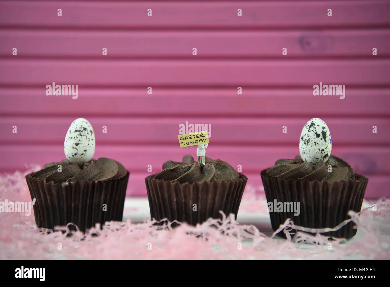Easter time chocolate cupcakes with egg decorations on top and Easter text or words Stock Photo
