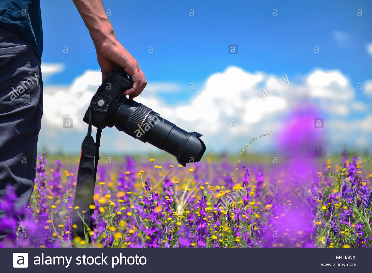 take pictures in nature - Stock Image