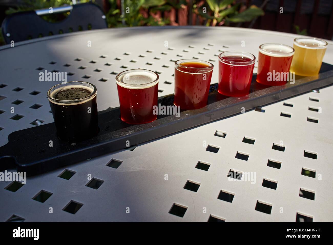 Flight of craft beers at Motorworks Brewing, Bradenton, Florida - Stock Image