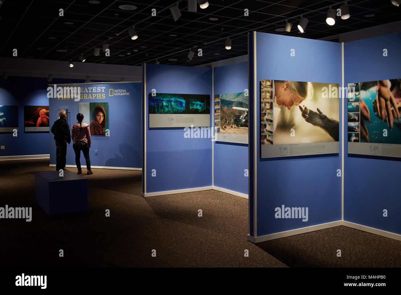 National Geographic 50 Greatest Photographs exhibit at the South Florida Museum, Bradenton, Florida - Stock Image