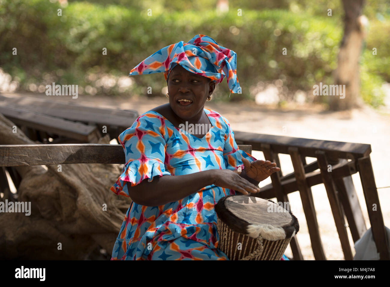 An indigenous Mandingo (Mandinka) tribe woman in colourful, traditional dress playing a traditional animal skin - Stock Image
