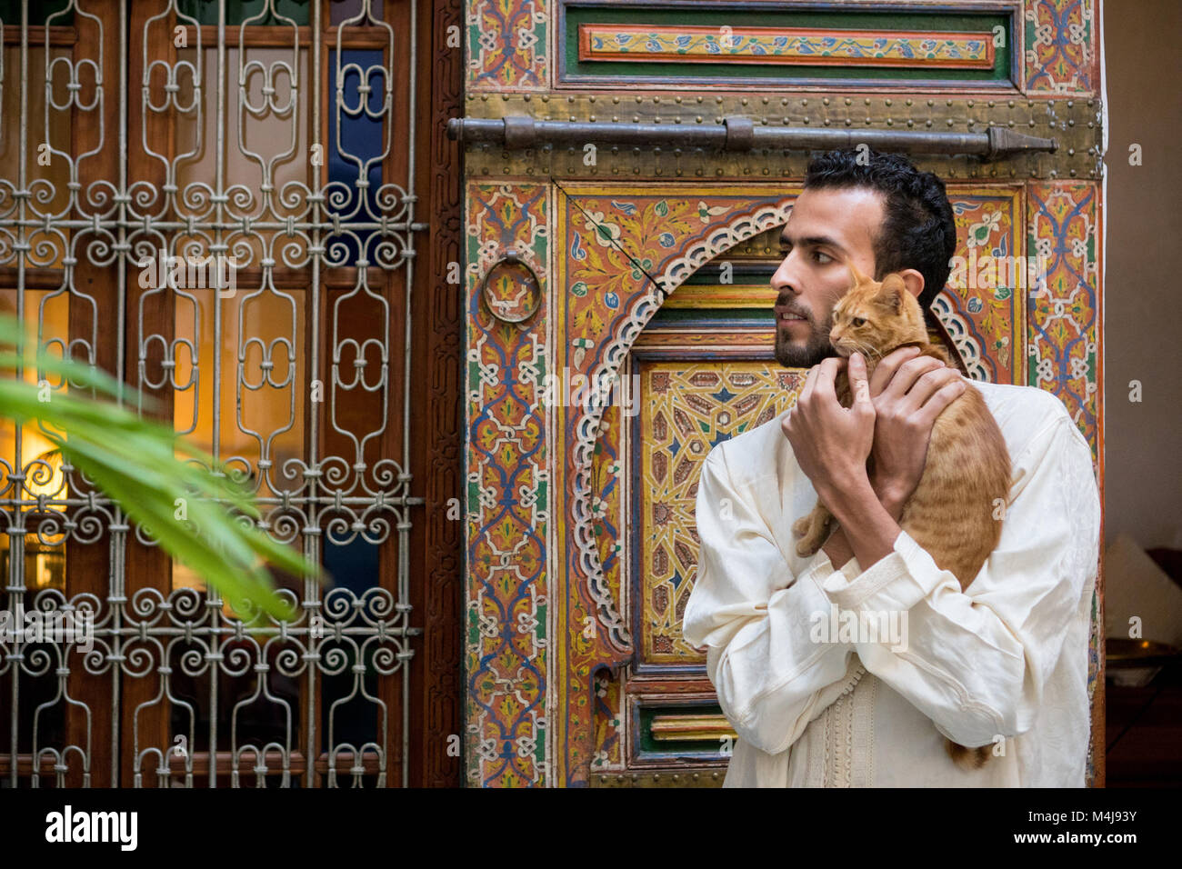Young muslim man in traditional clothing holding a yellow cat in traditional Moroccan ambient in front of a decorated - Stock Image
