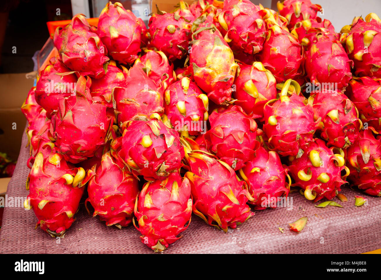 Freshly harvested pitaya (pitahaya or dragon fruit) cactus fruit on a street stall for sale at Urumchi, Xinjiang - Stock Image