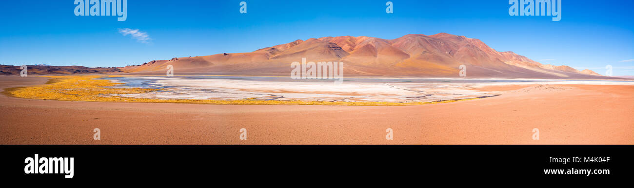 Salar de Aguas Calientes (Aguas Calientes Salt Lake) in the Altiplano (high Andean plateau) at an altitude of 4200m, - Stock Image