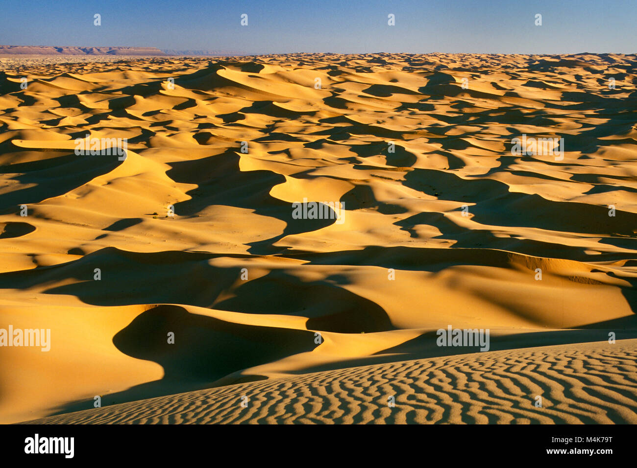 Algeria. Taghit or Tarit. Western Sand Sea. Grand Erg Occidental. Sahara desert. Panoramic view of Sand Dunes and - Stock Image