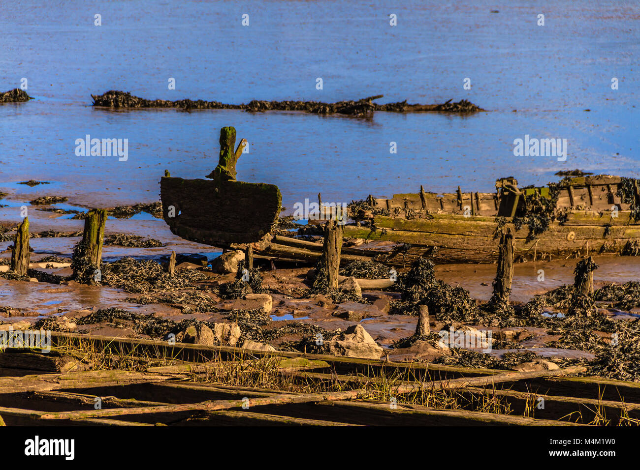 Bits of old boats visible at low tide on the Exe Estuary, Devon. Stock Photo