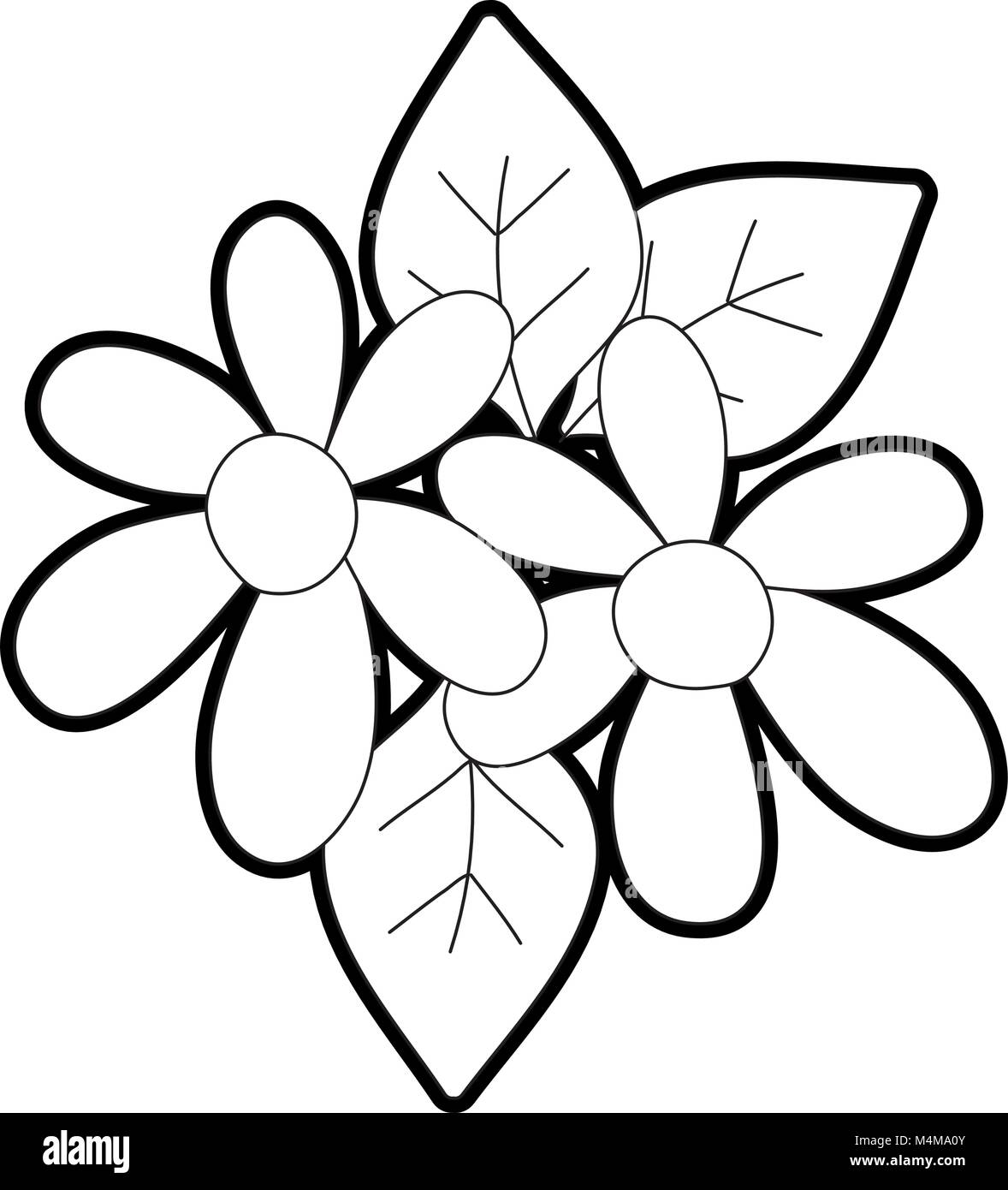 Outline beautiful flowers with petals and leaves decoration stock image