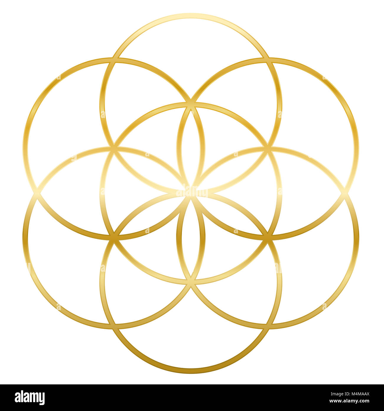 Golden Seed of Life. Precursor of Flower of Life symbol. Unique geometrical figure, composed of seven overlapping - Stock Image