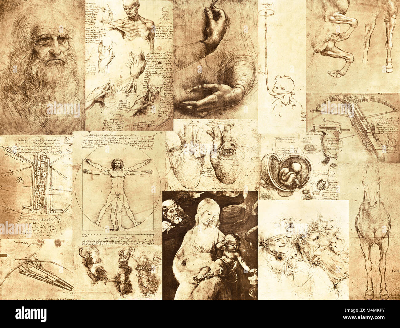 the inventive mind of Leonardo Da Vinci, 1452–1519, - Stock Image
