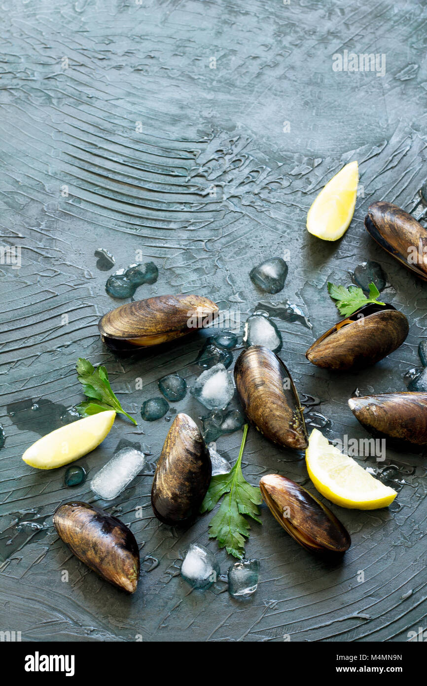 Fresh sea mollusks on a dark stone or slate background. Top view with a copy. - Stock Image