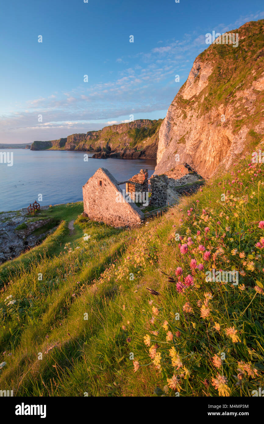 Old fishing cottage beneath the cliffs at Kinbane Head, Ballycastle, Country Antrim, Northern Ireland. - Stock Image