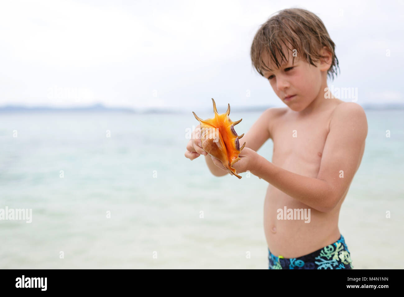 Focused face of cute boy with sea shell, closeup portrait of preteen blonde child, summer travel and beach vacation - Stock Image