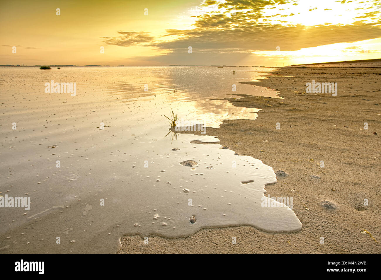 The upcoming tide floods parts of the beach of the island Tholen in Zeeland, the Netherlands - Stock Image
