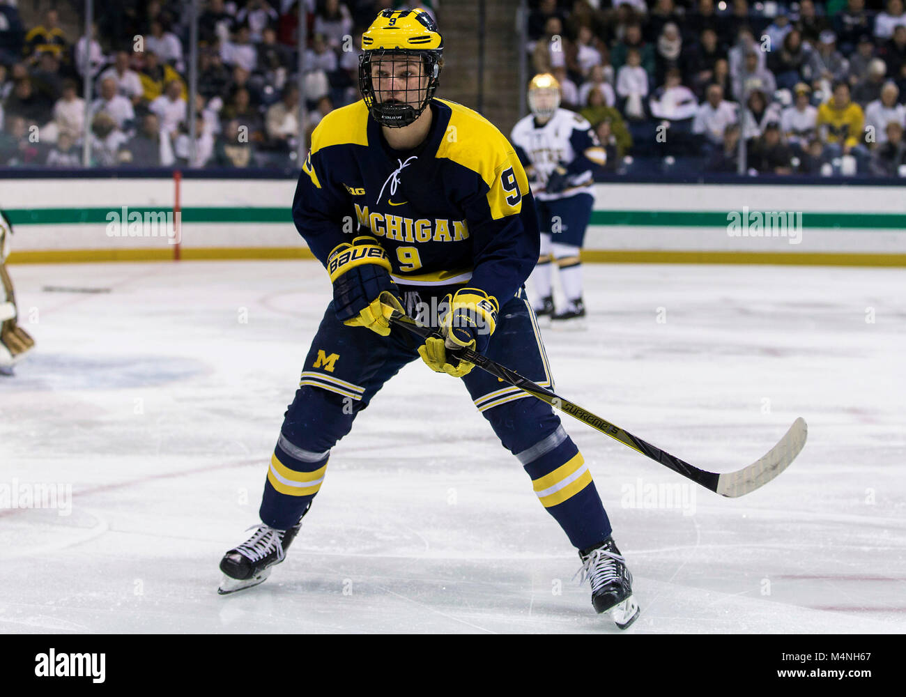 Image result for michigan wolverine hockey 2018