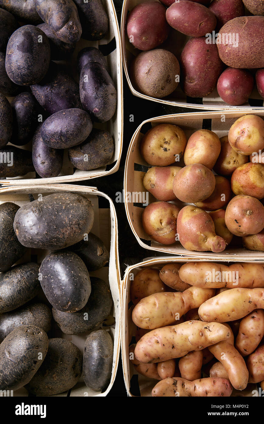Variety of raw uncooked organic potatoes different kind and colors red, yellow, purple in market baskets. Food background. Top view, close up Stock Photo