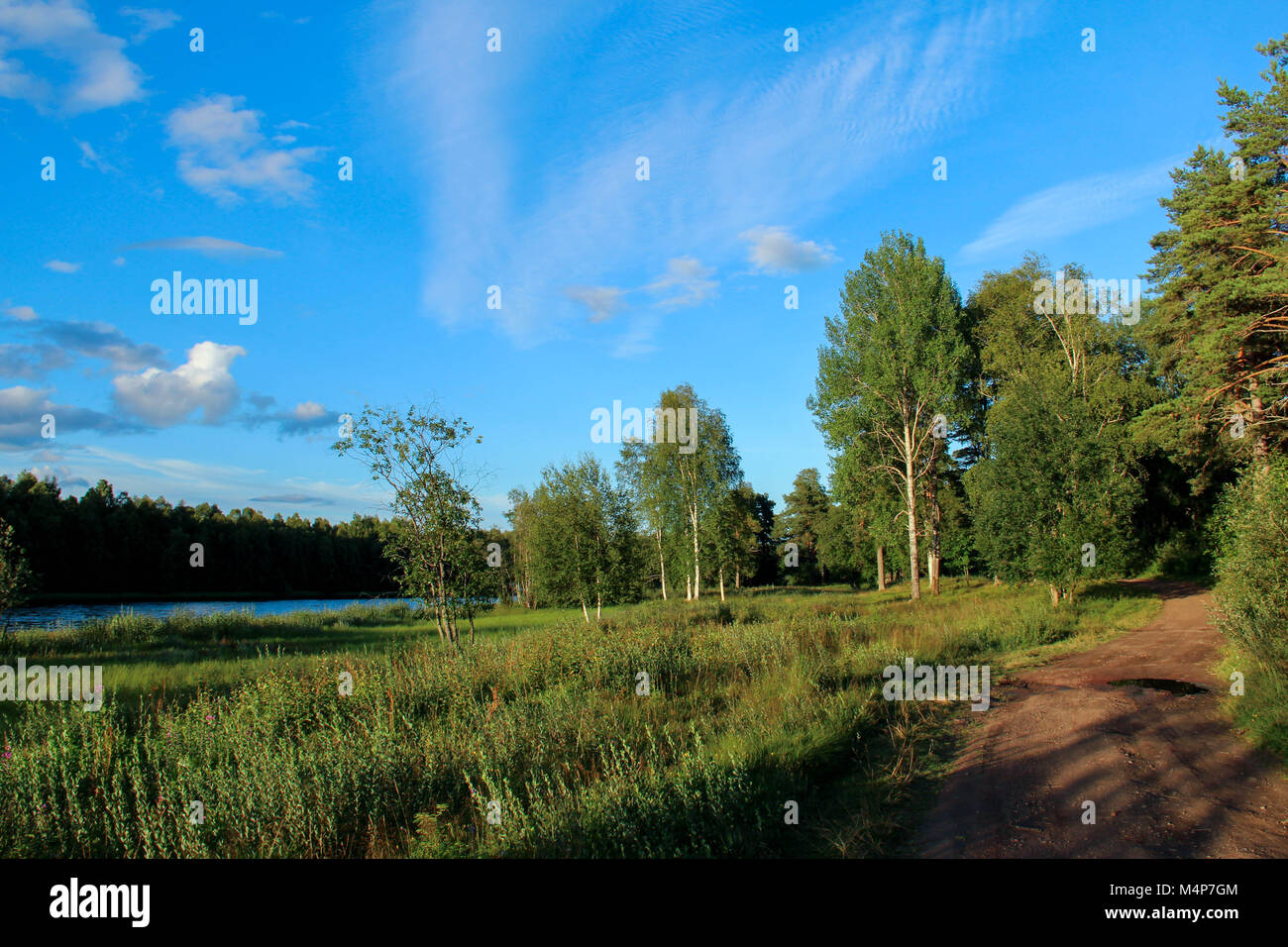 Rural road by a river at sunset in summer. - Stock Image