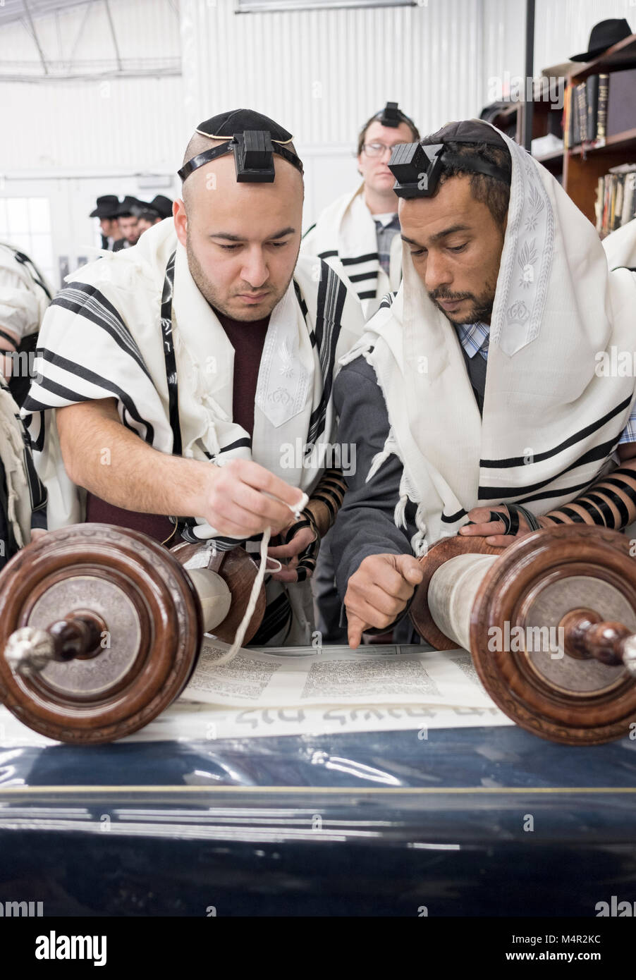 An orthodox Jewish man is called to the Torah for an ALLIYAH and shown where the reading will begin. In Queens, - Stock Image