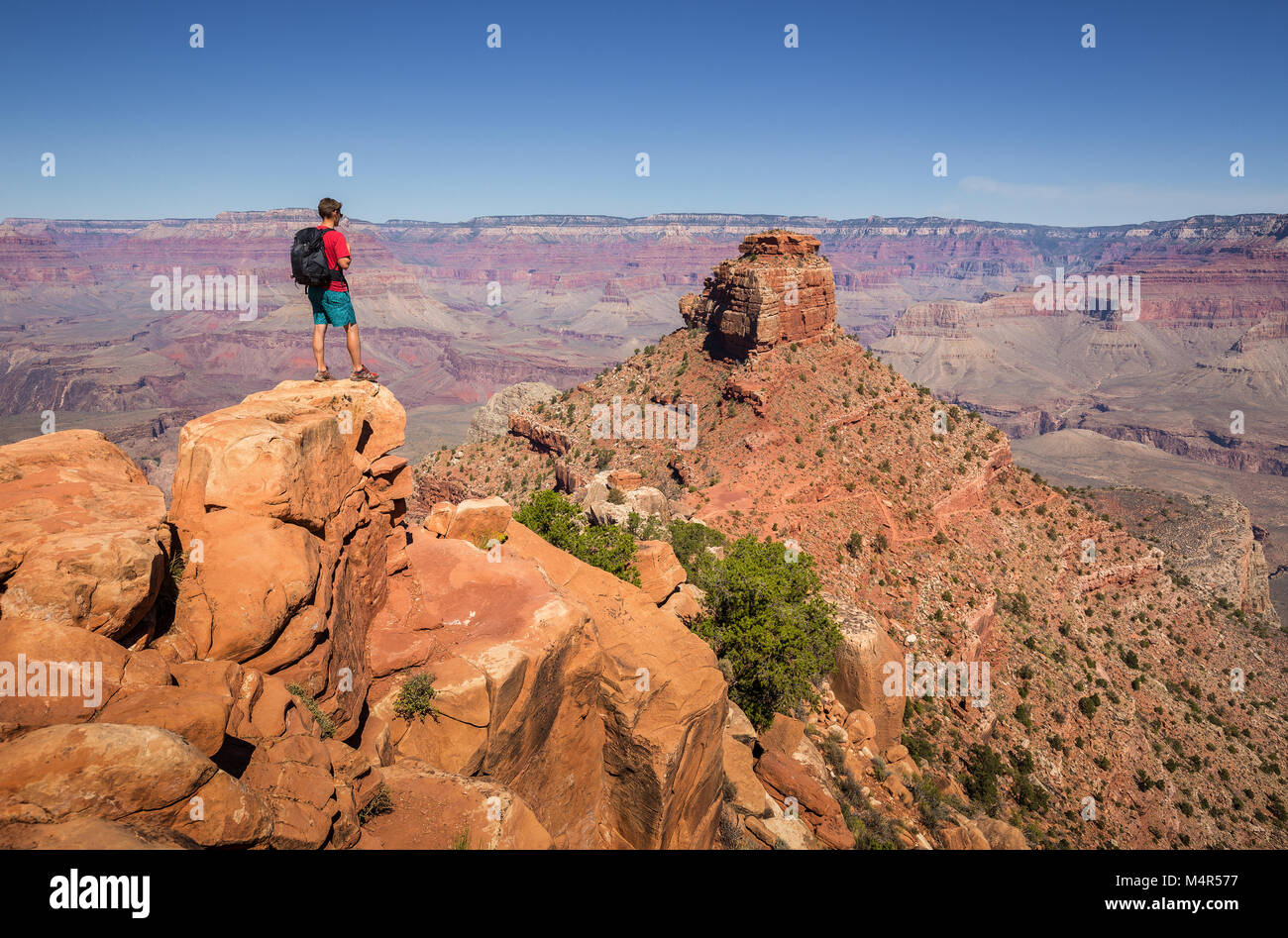 A young male hiker is standing on a rock at South Kaibab Trail enjoying the amazing view over famous Grand Canyon - Stock Image