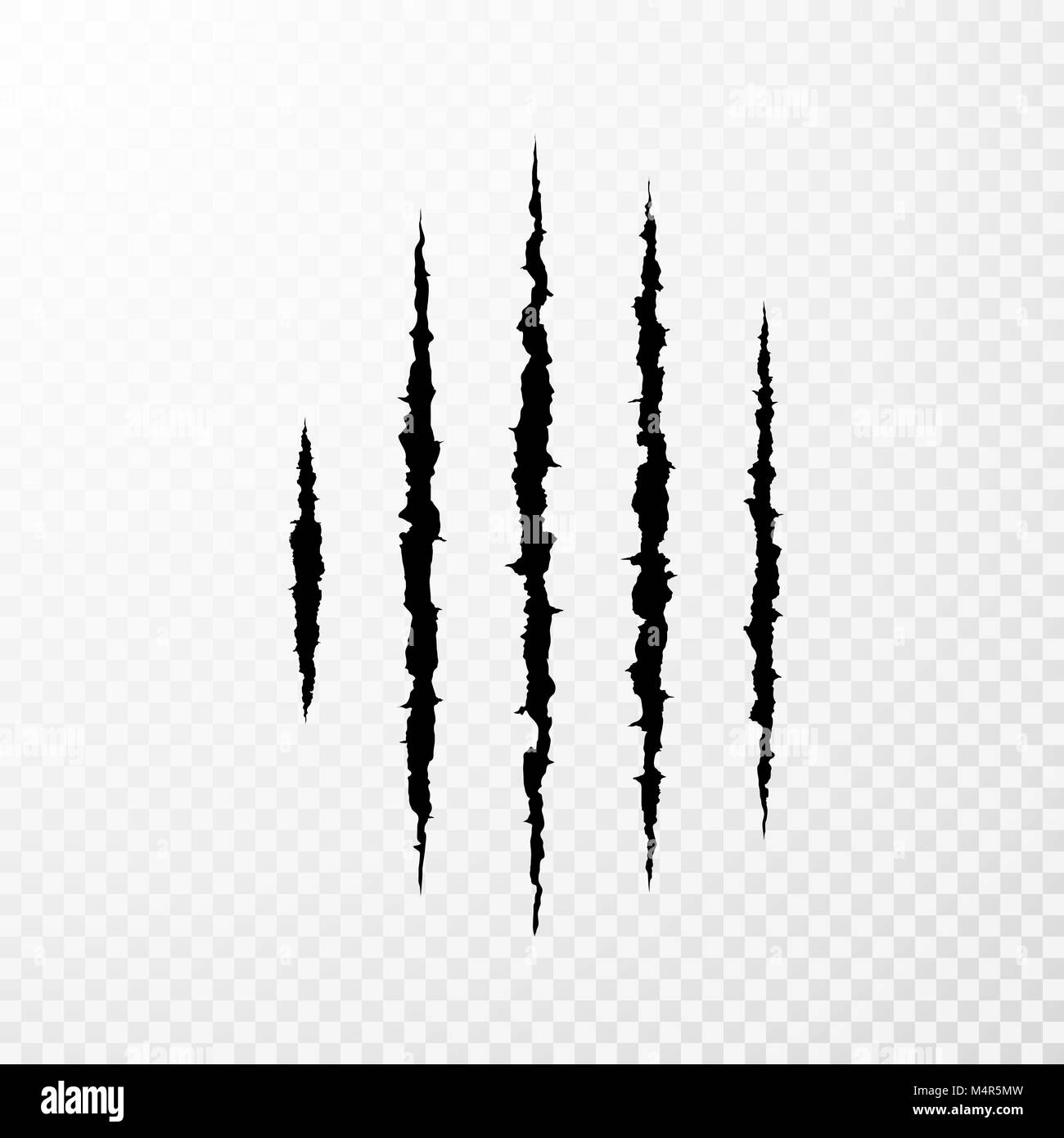 Traces from the claws of the monster. Claw scratch mark. Animal scratch isolated on transparent background. Shred - Stock Image