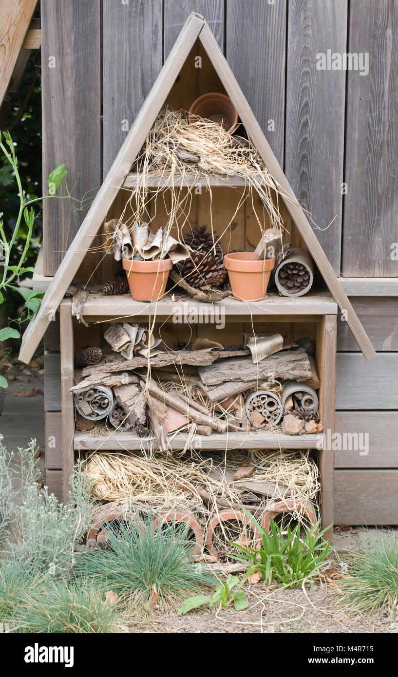 A bug house to encourage beneficial insects into the garden. - Stock Image
