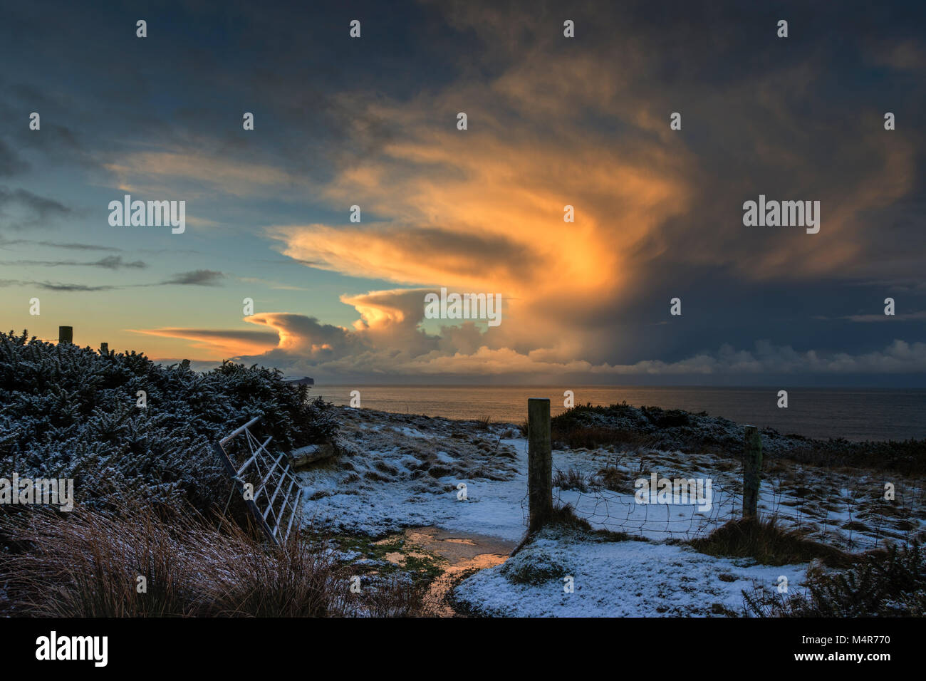 Cumulonimbus cloud at sunset, over the Pentland Firth, from a farm gate near St. John's Point, Caithness, Scotland, - Stock Image